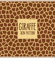 giraffe skin pattern in brown color vector image