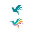 humming bird icon design vector image
