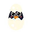 penguin baby in an egg vector image vector image