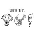 set of black and white doodle of seashell for your vector image vector image