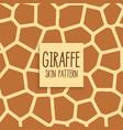 giraffe skin pattern design background vector image