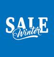 inscription winter sale vector image vector image