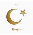 ramadan kareem glow arabic ornament covered vector image