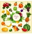 Ripe fruit with leaves cartoon poster vector image vector image