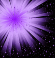 abstract black lilac background vector image vector image