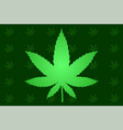 background with cannabis leaf vector image