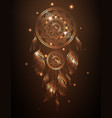 dreamcatcher in golden gradient vector image vector image