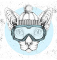 hipster animal sphynx cat in winter hat and vector image