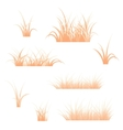 Orange grass vector image
