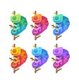 set colorful gradient chameleons on tree branch vector image vector image