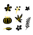 set doodle floral elements autumn vector image