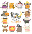 set funny animal characters dressed vector image