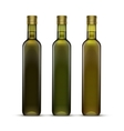 Set of Olive or Sunflower Oil Glass Bottles vector image