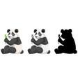 set of panda character vector image