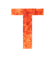 t land letter vector image vector image