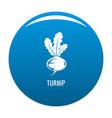turnip icon blue vector image