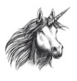 unicorn horse sketch fairy tale animal head vector image vector image