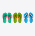 beach flip flop collection set vector image