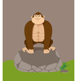 cartoon gorilla vector image