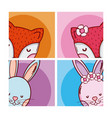 cute and lovely animals cartoons vector image