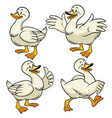 duck with cartoon style in set vector image vector image