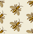 honey bee colored seamless pattern vector image vector image