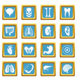human organs icons azure vector image vector image