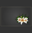 lily bouquet on black background template vector image