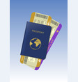 passport and air tickets vector image