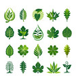 abstract leaf icon set vector image vector image