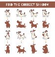 fun game for kids find the correct shadow vector image