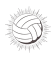 gray scale silhouette with volleyball ball vector image