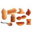 peanut icon set cartoon style vector image