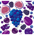 Seamless pattern of blue and lilac fruits vector image vector image