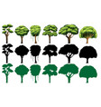 set of different tree vector image vector image