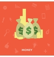 Money in the bag isolated on a white background vector image