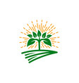 agriculture and organic farm logo vector image vector image