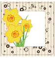 bouquet of daffodils greeting card vector image vector image