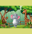 happy animals playing inside wooden fence vector image vector image