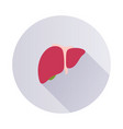 liver icon on round background vector image