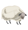 sheep icon cartoon style vector image vector image