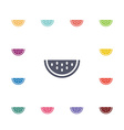 watermelon flat icons set vector image