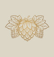 gold hop cone engrawing beer brewing vector image