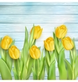 yellow tulips flowers on wooden planks eps 10