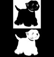 dogs west highland white terrier vector image