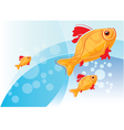 with gold fish vector image