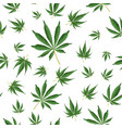 cannabis background marijuana hemp texture green vector image
