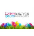 colorful easter eggs on green grass over white vector image vector image