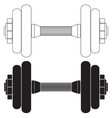 dumbbell ico vector image