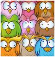 funny owl cartoon background vector image